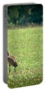 Sandhill Cranes And Friends Portable Battery Charger