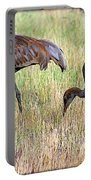 Sandhill Cranes I Portable Battery Charger