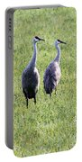 Sandhill Cranes In Wisconsin Portable Battery Charger