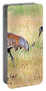 Sandhill Cranes Ll Portable Battery Charger