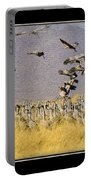 Sandhill Cranes On The Ground Portable Battery Charger