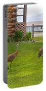 Sandhill Cranes On The Lawn By The Statue Of Mary In Homer-alaska Portable Battery Charger