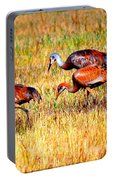 Sandhill Family Portable Battery Charger