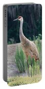 Sandhill Standing Tall Portable Battery Charger