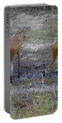 Sandhill Stork Portable Battery Charger