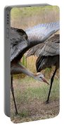Sandhill Stretch Portable Battery Charger
