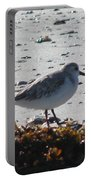 Sandpiper And Seaweed Portable Battery Charger