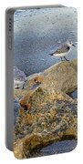 Sandpipers On Coral Beach Portable Battery Charger