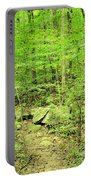 Sandstone Glade Of Shades Mountain Portable Battery Charger