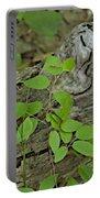 Sanford Vine Portable Battery Charger