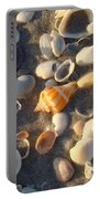 Sanibel Island Shells 2 Portable Battery Charger