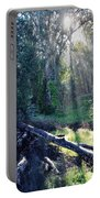 Santa Barbara Eucalyptus Forest II Portable Battery Charger
