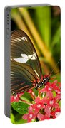 Sapho Longwing Butterfly Portable Battery Charger