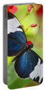 Sapho Longwing  Portable Battery Charger