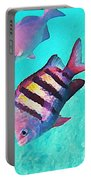 Sargeant Fish Portable Battery Charger