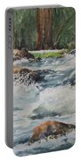 Sauble Falls Portable Battery Charger