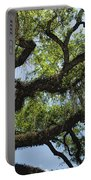 Savannah Live Oak And Spanish Moss Portable Battery Charger