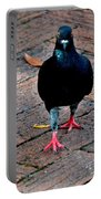 Savannah Pigeon Portable Battery Charger