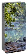 Savannah River In Spring Portable Battery Charger