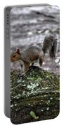 Savannah Squirrel Portable Battery Charger