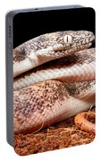 Savu Python In Defensive Posture Portable Battery Charger