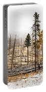 Sawback Burn, On Bow Valley Parkway Portable Battery Charger