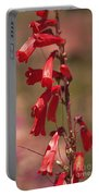 Scarlet Colorado Penstemons Portable Battery Charger