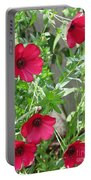 Scarlet Flax Portable Battery Charger