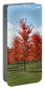Scarlet Formation Portable Battery Charger