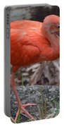 Scarlet Ibis One Legged Pose Portable Battery Charger
