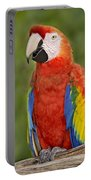 Scarlet Macaw Parrot Portable Battery Charger