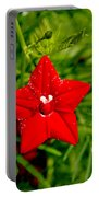 Scarlet Morning Glory - Horizontal Portable Battery Charger