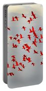 Scarlet Sky Portable Battery Charger