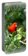 Scarlet Tanager Portable Battery Charger