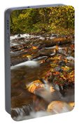 Scattered Leaves Portable Battery Charger
