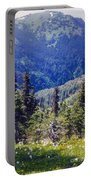 Scenic Mountain Valley Portable Battery Charger