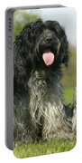 Schapendoes, Or Dutch Sheepdogs Portable Battery Charger