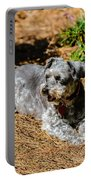 Schnauzer Portable Battery Charger