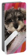 Schnauzer Puppy Looking Over Top Portable Battery Charger