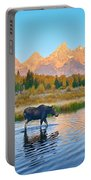 Schwabacher Morning Travels Portable Battery Charger