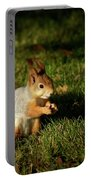 Sciurus Vulgaris In Evening Light Portable Battery Charger