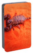 Scorpion Red Sand Sting Insect Portable Battery Charger