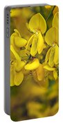 Scotch Broom 3 Portable Battery Charger