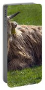 Scottish Highland Cattle 3                          Portable Battery Charger