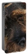 Scottish Terrier Closeup Portable Battery Charger