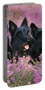 Scottish Terrier Dogs Portable Battery Charger
