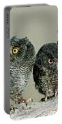 Screech Owl Chicks Portable Battery Charger
