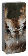 Screech Owl Portrait Portable Battery Charger