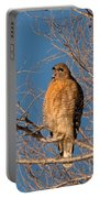 Screeching Red-shouldered Hawk Portable Battery Charger