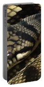 Scrub Python Abstraction Portable Battery Charger